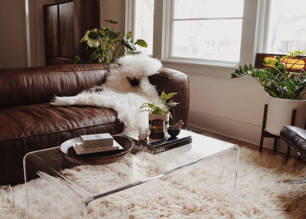 We love how Bridget Ambrose's dark and moody space is lightened up with playful accessories and that cool lucite coffee table.